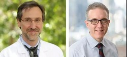 学术期刊《科学》封面及特刊聚焦肿瘤免疫治疗