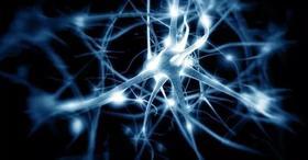 Livescience网站评选出2018人类对自己十大新了解