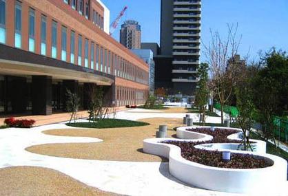 日本山王医院