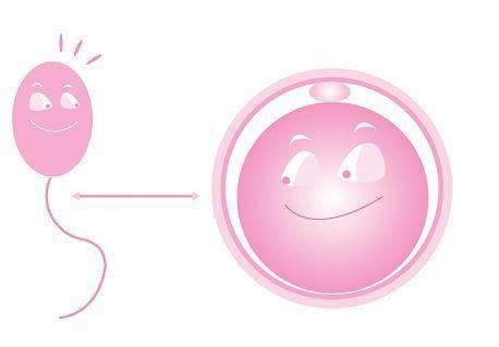 泰国试管婴儿的成功率