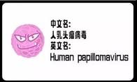 HPV,并沒有你想的那么可怕!