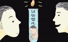 泰国试管婴儿移植胚胎怎么避免移植失败的风险
